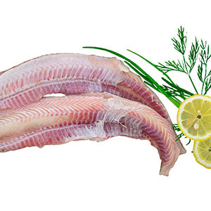 cazon-a-filetes-sin-espina-pescado