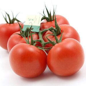 tomate-jardin-de-rebelais-fruta-y-verdura-verduras-y-hortalizas (1)
